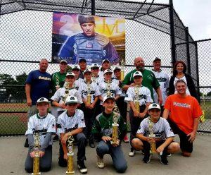 Farmingdale Green Dogs 12U Baseball Team